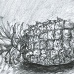 "Amanda Alexander. ""Pineapple Structure"". Medium: ebony pencil on paper. Dimensions: 8.5"" x 11"""
