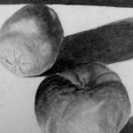 "Taylor Carlin. ""Apple Black and White"". Medium: graphite pencil. Dimensions: 9"" x 11.5""."