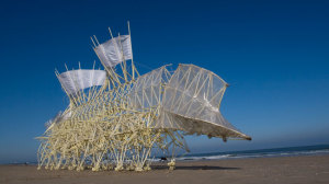 A Strandbeest by Theo Jansen - a wind-powered, moving creature made of PVC pipes